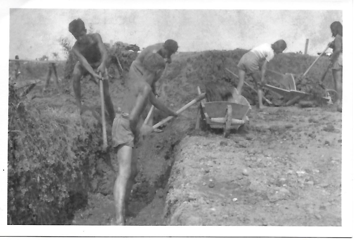 Fotografija 1. 7. - 7. 9. 1946 Dijaki 1. gimnazije Maribor na delovni akciji mladinske delovne brigade pri regulaciji reke Pesnice (prva z leve Ljubo Struna in Andrej Rosina)